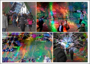 Collage showing different views of reflections